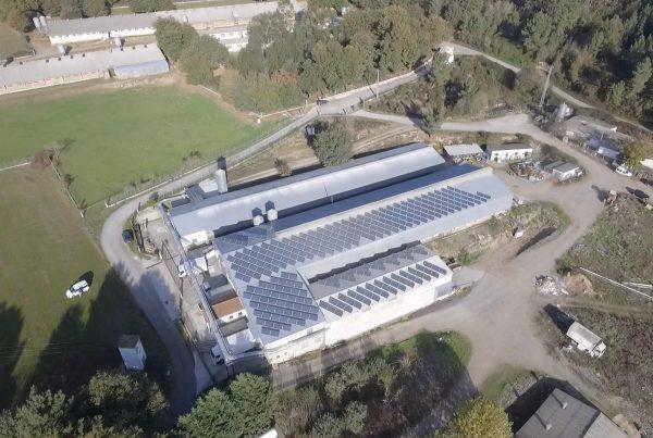 Instalación de autoconsumo en Avipor Silleda, Pontevedra - EDF Solar