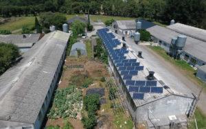 Instalación de autoconsumo en Manuel Zas - Lugo - EDF Solar - Expertos en Fotovoltaica Industrial