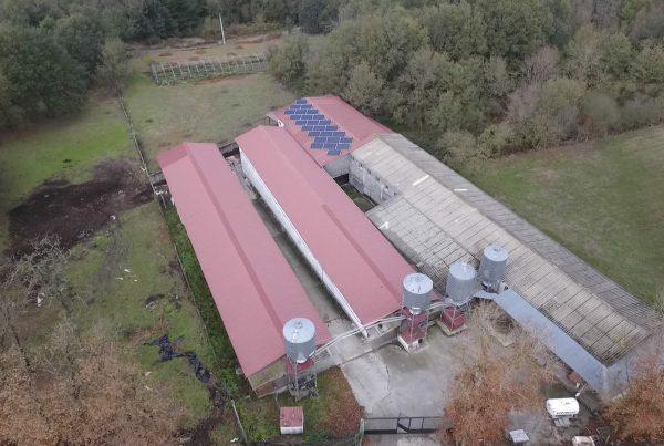 Instalación de energía solar fotovoltaica para autoconsumo en granja Sanchez Fariñas - Ourense - EDF Solar