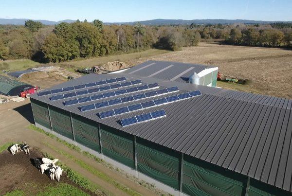 Instalación de autoconsumo fotovoltaico en Granja Carreira SC (A Coruña) - EDF Solar
