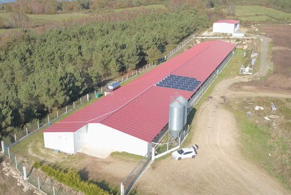 Instalación de Autoconsumo en Ganadería Wenceslao, Pontevedra - EDF Solar