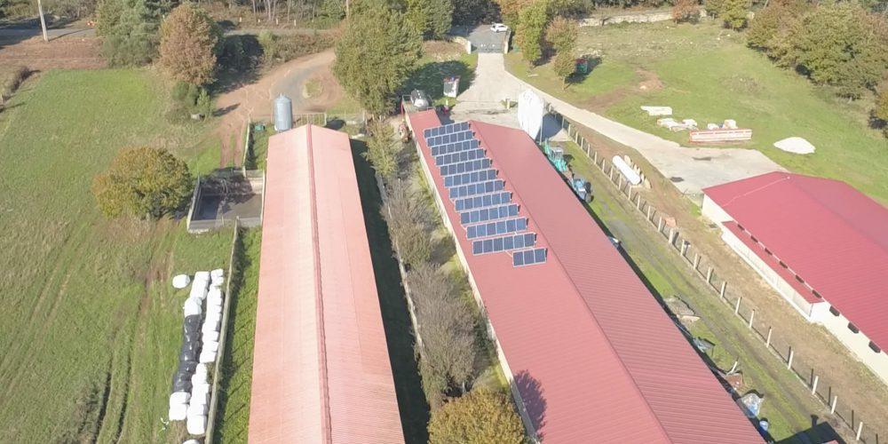 Instalación de autoconsumo en Granja Pial S.C. - EDF Solar