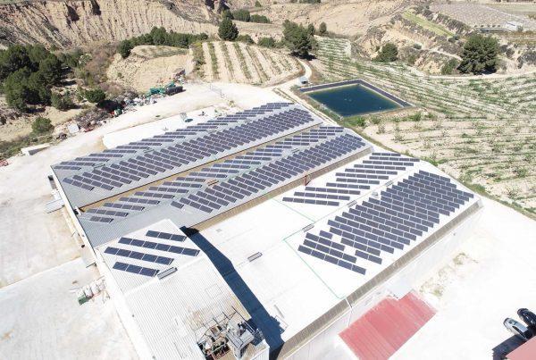 Instalación de autoconsumo en Almendras Pliego, Murcia - EDF SOLAR