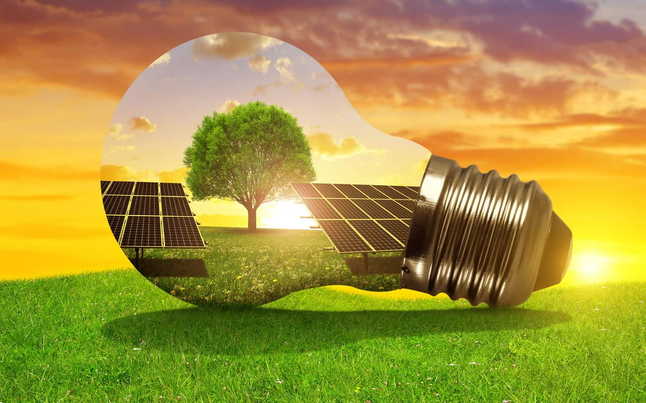 Día mundial del Medioambiente 2019 - EDF SOLAR