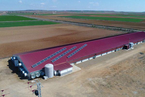 Instalación de autoconsumo fotovoltaico en Granja Sergio Castro - EDF SOLAR