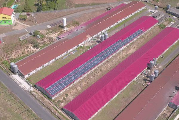 Instalación de autoconsumo en granja Excorrigal, A Coruña - EDF SOLAR