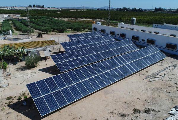 Instalación de autoconsumo Agropor Finca El Traspolín, Murcia - EDF SOLAR