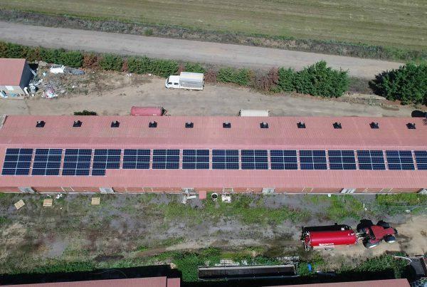 Instalación de autoconsumo en granja Evaristo Alonso Aguado, León - EDF SOLAR
