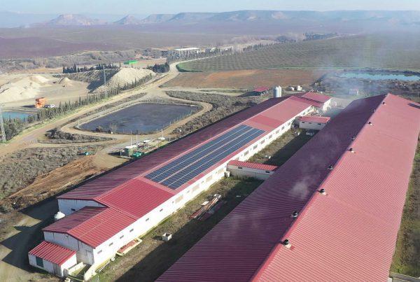 Instalación de autoconsumo para ganadería en Binapig, Huesca - EDF SOLAR
