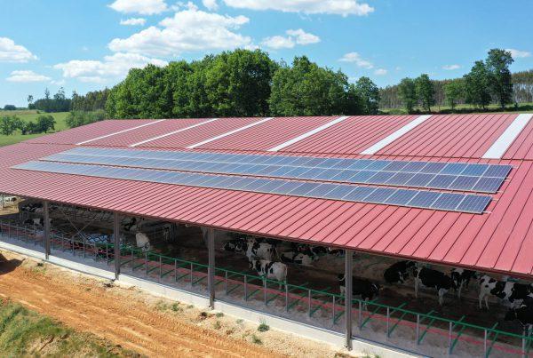 Instalación de autoconsumo eléctrico en granja Galicia - EDF Solar