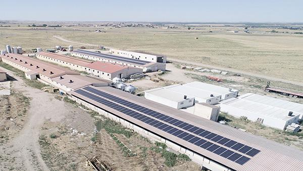 Instalación de autoconsumo fotovoltaico en ganadería Rodrigo Bartolomé Peromingo