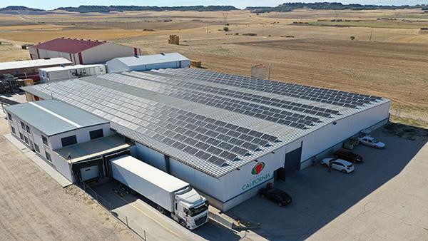 Instalación de autoconsumo fotovoltaico en Viveros California