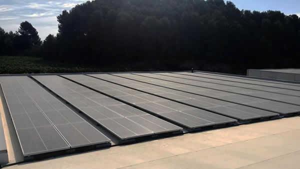 Instalación de autoconsumo fotovoltaico industrial en Bodegas Pinord, Catalunya - EDF Solar