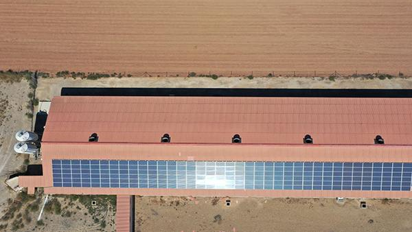 Instalación de autoconsumo en Hibrídos del Moncayo - EDF Solar