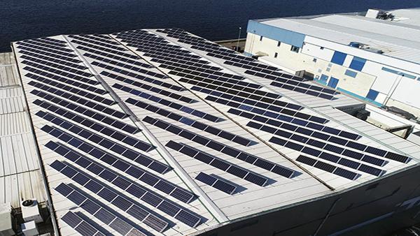 Instalación de autoconsumo fotovoltaico en Frigoríficos Albeda | Eidf Solar