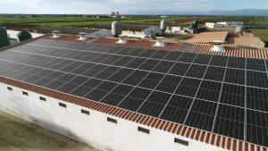 Instalación de autoconsumo fotovoltaico en Hepelcos | EDF Solar