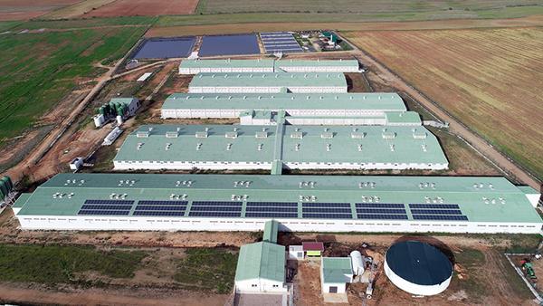 Instalación de autoconsumo fotovoltaico en Inversiones Ganaderas Santa Ana | EDF Solar