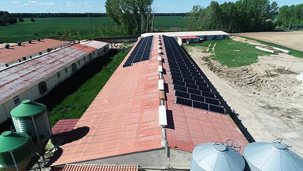 Instalación de autoconsumo fotovoltaico en Integraciones Cochinillo Segoviano | EiDF