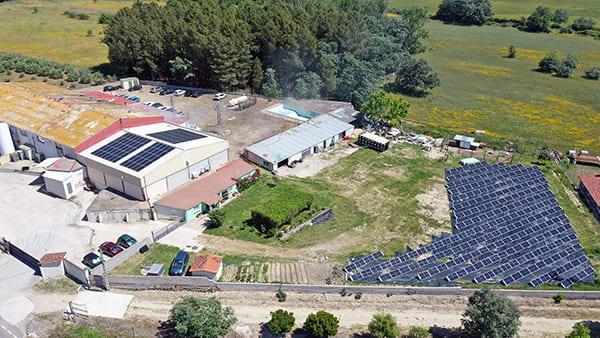 Instalación fotovoltaica de autoconsumo en Grupo Industrial Pancho Mex   EiDF Solar