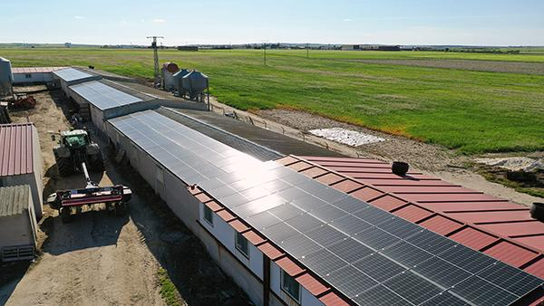Instalación fotovoltaica autoconsumo Yuste Martín | EiDF