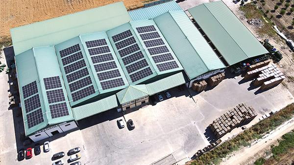 Instalación de autoconsumo fotovoltaico en Peregrin One Garlic | EiDF