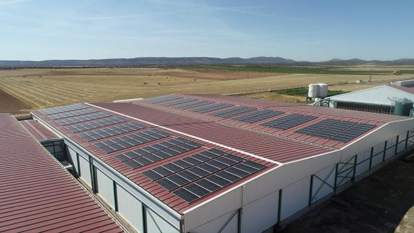 Instalación fotovoltaica de autoconsumo en Granja Avícola San Antonio   EiDF