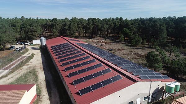Instalación de autoconsumo energético en Pablo Tejedor   EiDF
