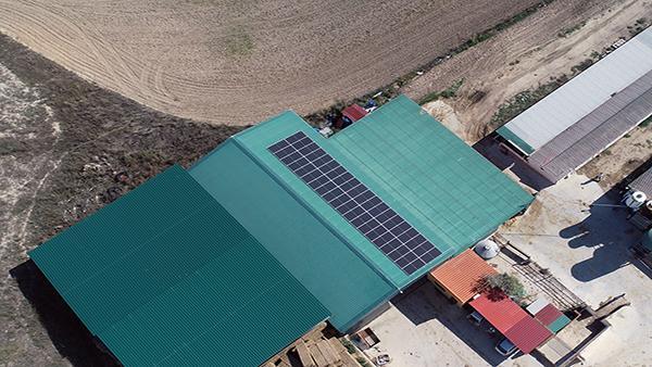 Instalación de autoconsumo energético en Explotaciones Sofalber   EiDF
